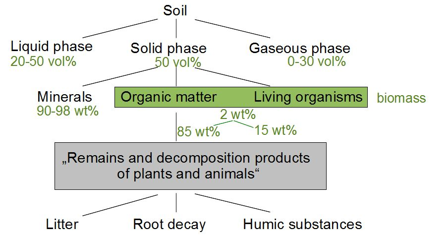 soil_components.jpg