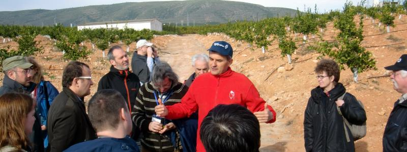 Artemi Cerda discussing soil management under orange plantations in Xàtiva/Spain (T. Caspari)