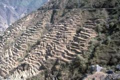 Terraces in the Middle Hills of Nepal, to control erosion and make agriculture on steeps slopes possible. Photo Godert van Lynden