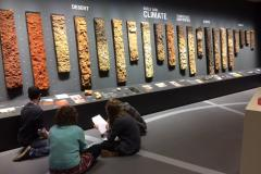Students actively studying during an assignment in the World Soil Museum (photo credit: S. Mantel)