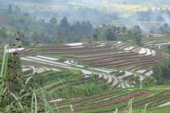 """Dry"" terraces and irrigated ""Sawahs"" for rice, Indonesia. Photo: WOCAT"